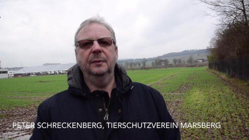 Tierschutzverein Für Schäferhunde Marsberg