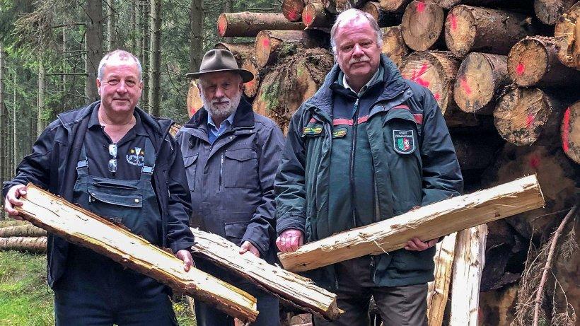 Warum beschädigtes Fichtenholz in die Kamine wandern soll - WP News